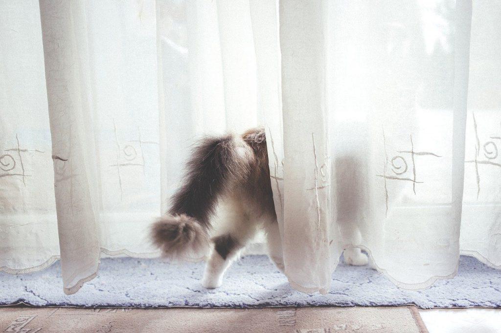 cortinas blancas precio